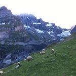 Zu hinderst im Kiental steht die Gspalenhornhütte